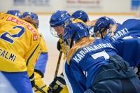 Naisleijonilla edessä kolme maaottelua Ruotsia vastaan - Kokoonpano Maarianhaminan Finnkampeniin julkistettu!